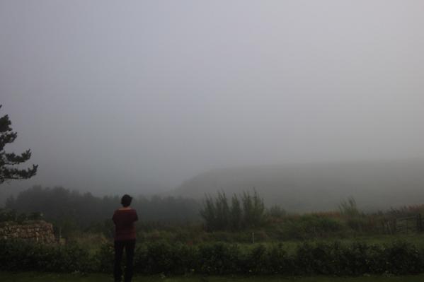 CaroHardy-Portally-Brouillard - copie